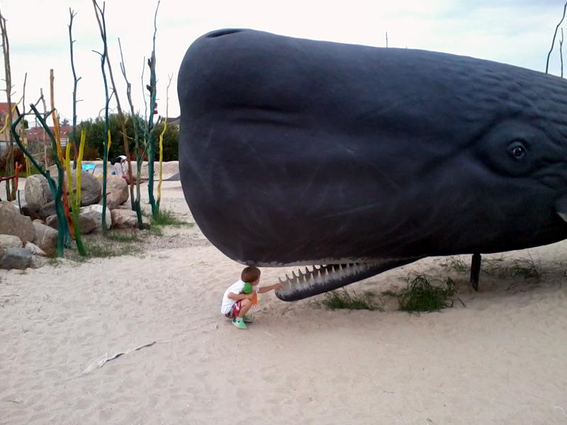Park wieloryba9, Kornel